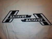 Batavus Decal set